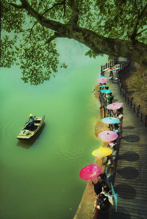春天的秀江河图片