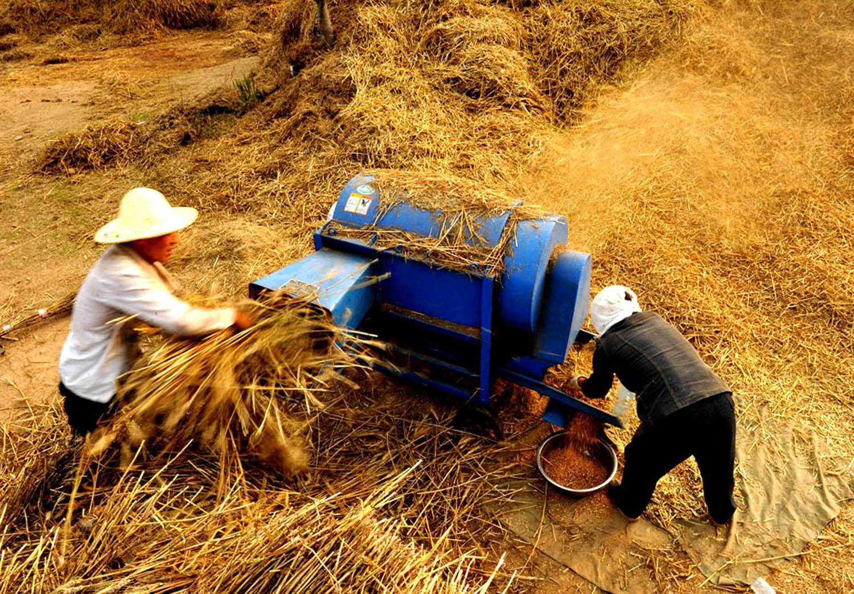 打麦场上-第三届福能杯·能源与环境全国摄