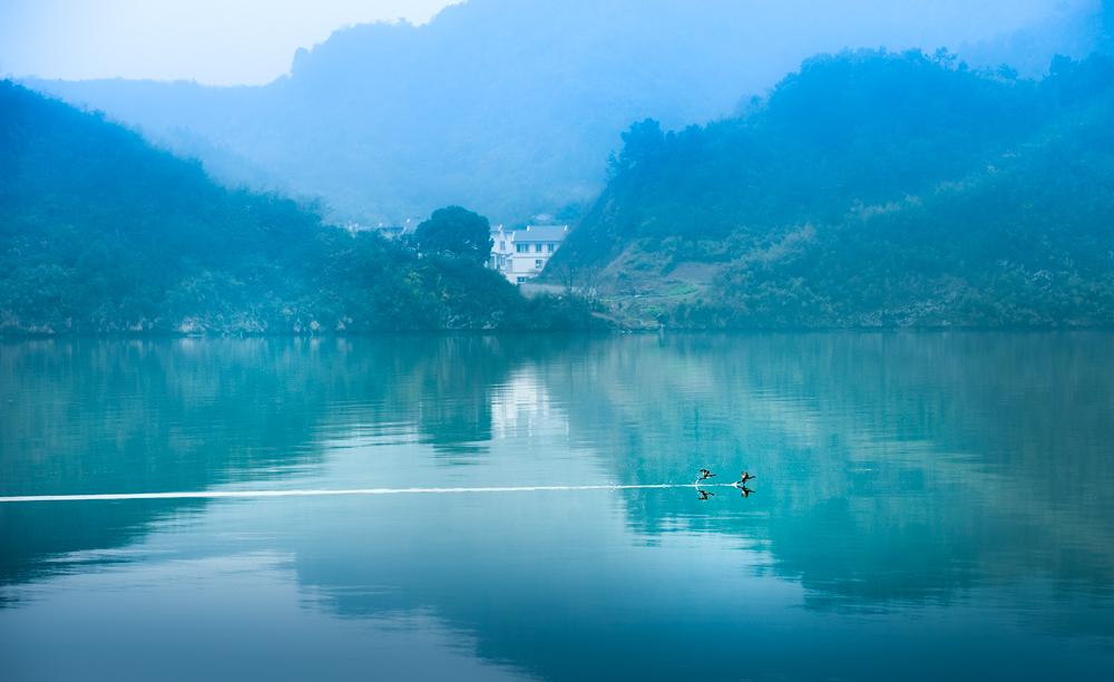 晨雾里,梅城一切显得如此寂静,但一对野水鸭在水面上的掠过,反尔更