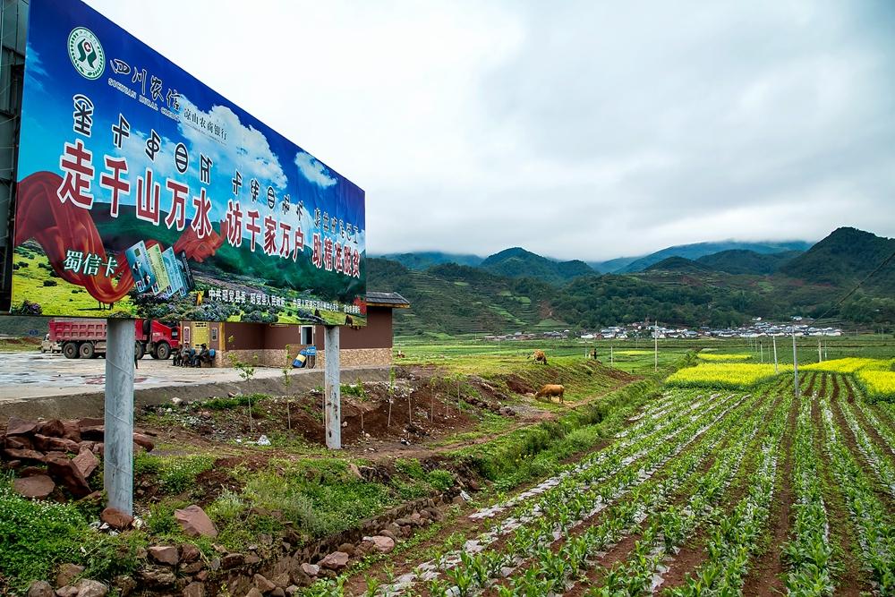 —(2),2018年5月29日拍摄于四川凉山彝族自治州昭觉县树坪.
