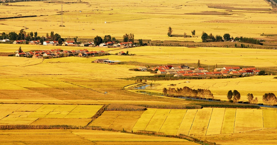 <p>秋天的乡村,一片丰收的景象.2008年10月摄于吉林省梅河口市湾