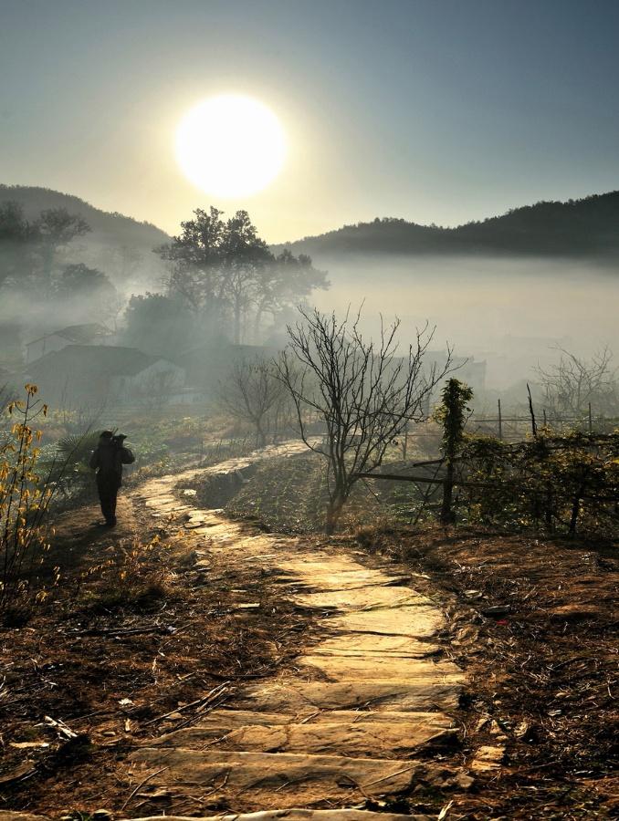 乡间的小路